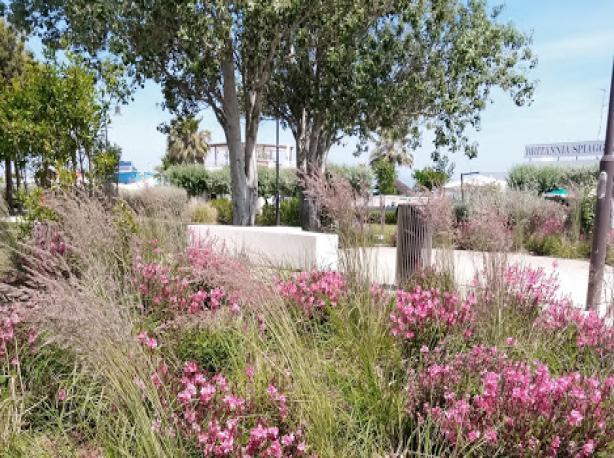Giardini a mare   Cesenatico